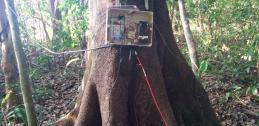 Arduino data logger in Costa Rica