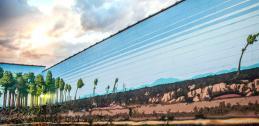 "Mural in Laramie, Wyoming, ""Growth."""