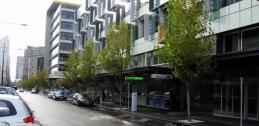 Street tree biofiltration in Melbourne, Australia
