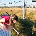 Grassland test plot to measure climate effect on microbes and carbon