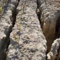 extreme soil erosion