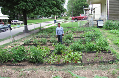 Chammi Attanayake, A Soil And Environmental Chemistry Graduate Research  Assistant At Kansas State University, Shown In A Test Plot At The Urban  Garden Site ...