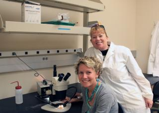 Mandy Williams and Brenda Buck in their laboratory.