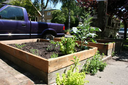 Raised garden bed with truck parked in background