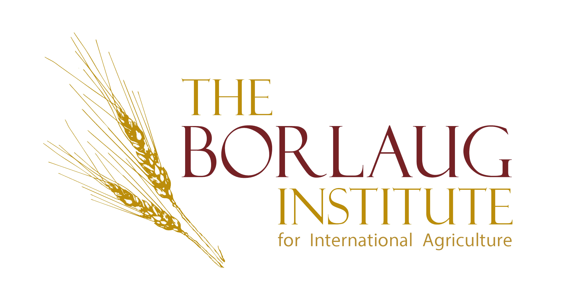 Borlaug Institute Logo