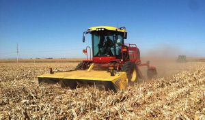 Picture of combine in corn field