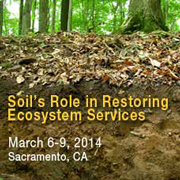 Soil's Role in Restoring Ecosystem Services
