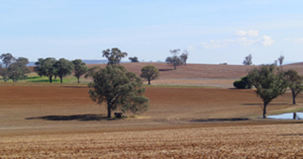 Agricultural soils in New South Wales