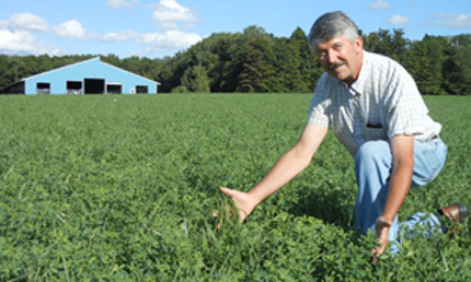 Ken Paddock in forage field