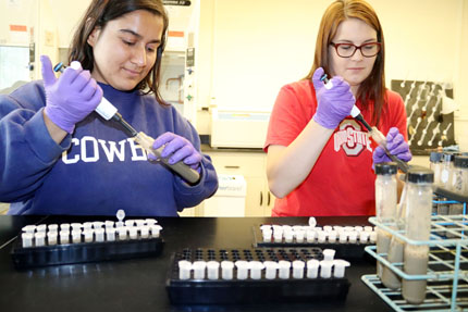 Quick Soil Test Aims To Determine Nitrogen Need Soil Science
