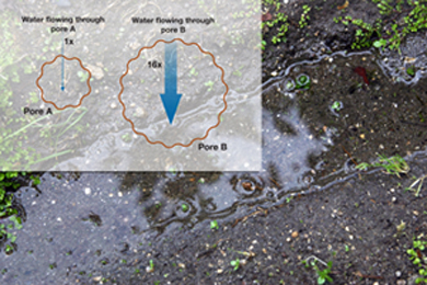 comparison of soil pore sizes and water flow volume