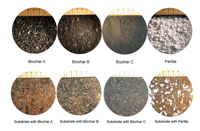 Study highlights biochar s potential in horticulture for Different uses of soil