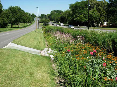 A road with a bioswale in the median