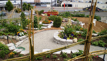 Raised beds in a community garden built with stone