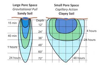 Diagram showing the speed of water movement in clay versus sand