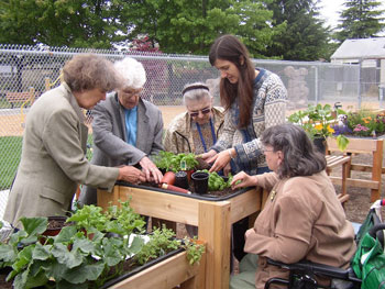Group of people tending a garden bed