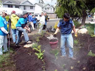 People building a rain garden