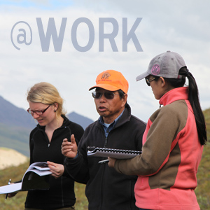 Soil scientists at work in Alaskan field