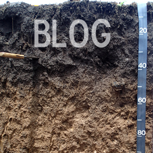 Soils Matter Blog, photo of soil profile