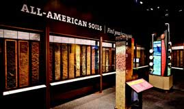 Wall of soils exhibit