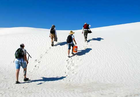 Researchers walking up sand dune
