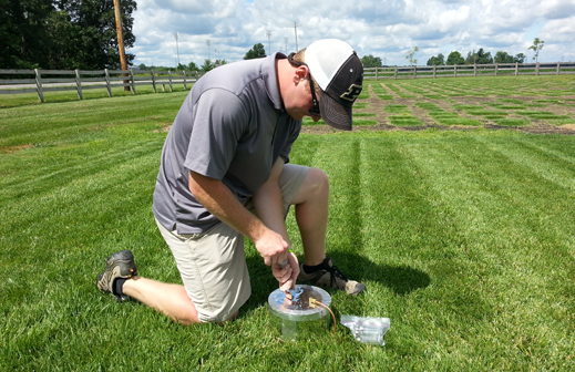 Sampling soil carbon in turf