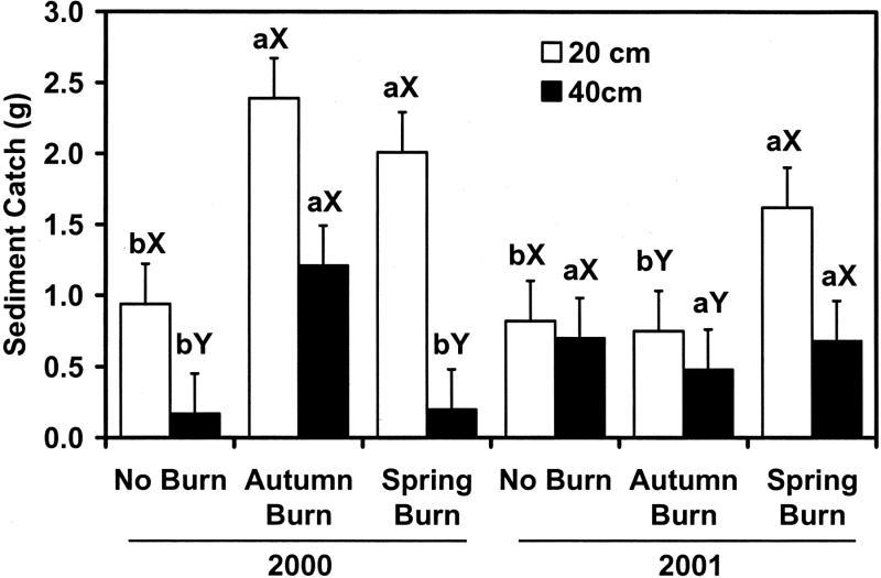 how to fix wind burn