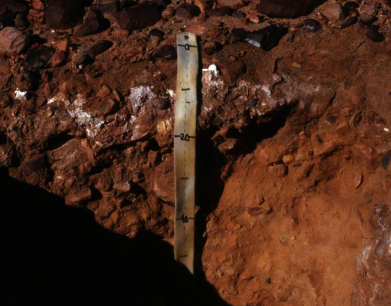 Salt pan in Antarctic soil